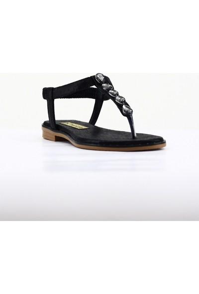 Nellson Jackson Dolores Siyah Kadın Yazlık Deri Taşlı Parmak Arası Sandalet