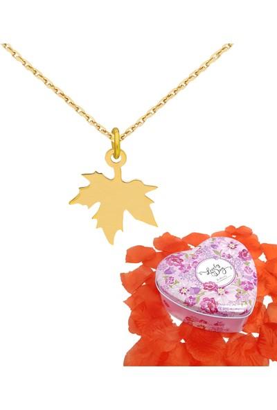 Chavin Kalp Kutulu Sonbahar Yaprak Altın Bayan Kolye Ea62