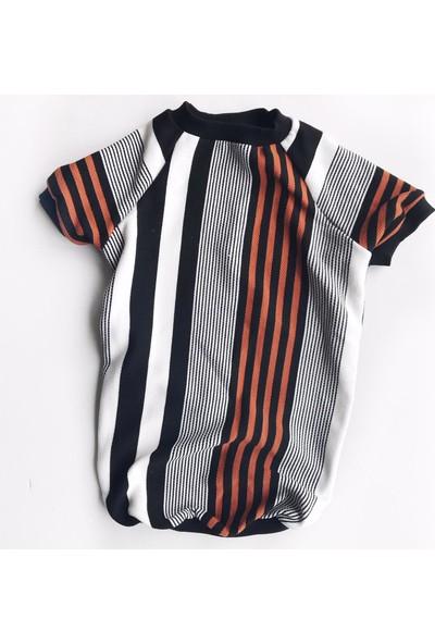 Kemique Colour Brown Stripe Tshirt Büyük Köpek