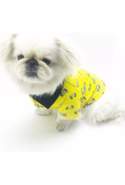 Kemique Göz Göz Yellow Polo Yaka Tshirt Köpek Kiyafeti Köpek Elbisesi