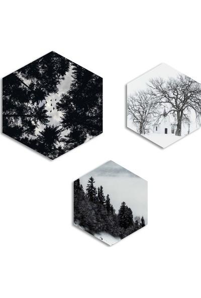 Dekolia By Foresta Concept 3 Parçalı Altıgen MDF Tablo DKV153