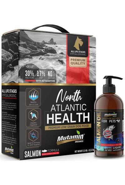 Mutamin Organics North Atlantic Health Somonlu Köpek Maması Combo Paket 4