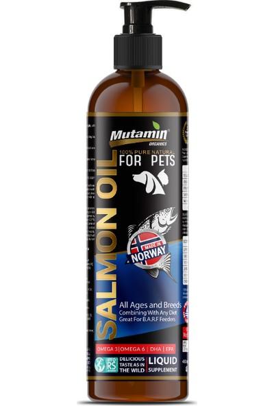 Mutamin Medium Large Düşük Tahıllı Somonlu Köpek Maması 15 Kg Combo Paket 3