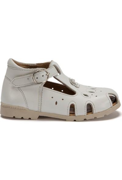 Kifidis 355 İlk Adım Ayakkabısı 19-24