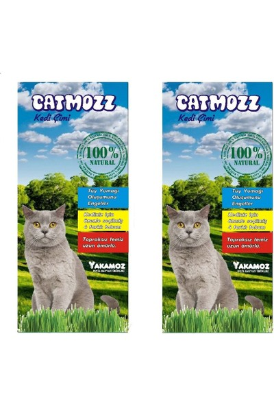 Catmozz Topraksız Kedi Çimi 2 Adet