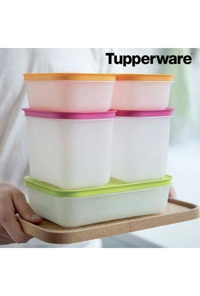 Tupperware Alaska Set 5'li