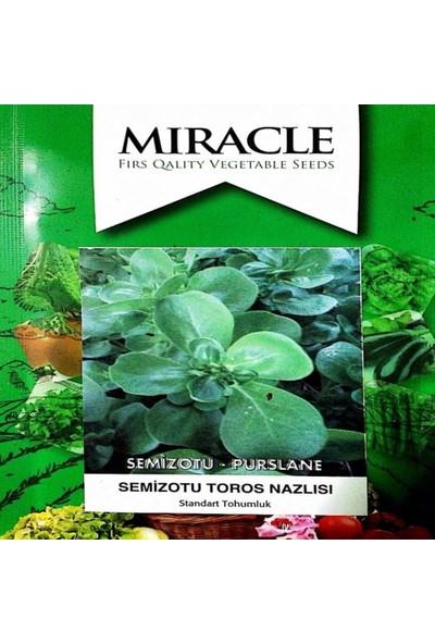 İdeasepet Naturel Toros Nazlısı Semizotu Tohumu (10 Gram)
