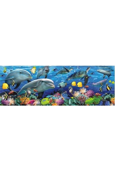 Denızın Altında / Undersea