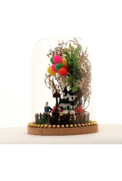 Esteryum Balonlu Ev - Teraryum