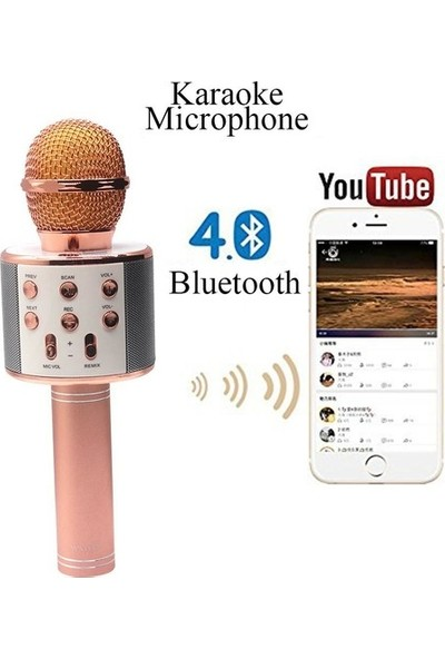 Case 4U Karaoke Mikrofon Bluetooth Hoparlör Aux Usb Mikro Sd Kart Girişli Altın
