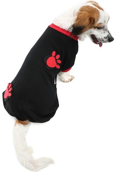 Dogi & Dog Pati Kedi - Köpek Tulumu - Köpek Kıyafeti