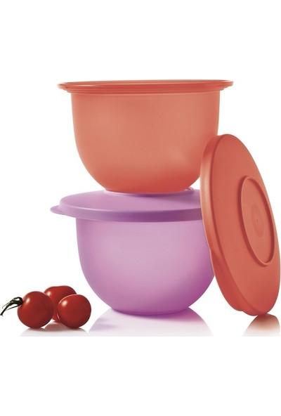 Hsgl Tupperware Eko Kap 2x 500 ml ( Saklama Kabı ) Lila-Turuncu
