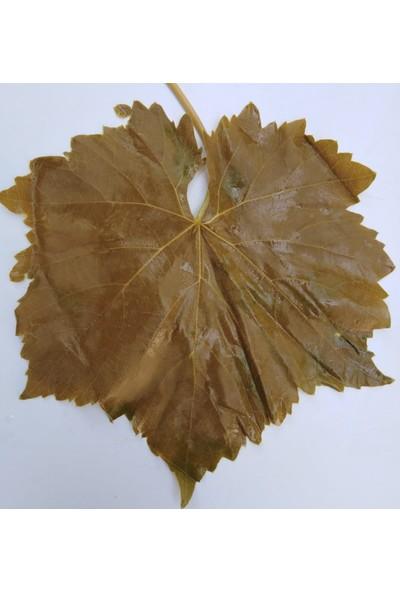 Ege Salihli Salamura Üzüm Bağı Asma Yaprağı 3 kg