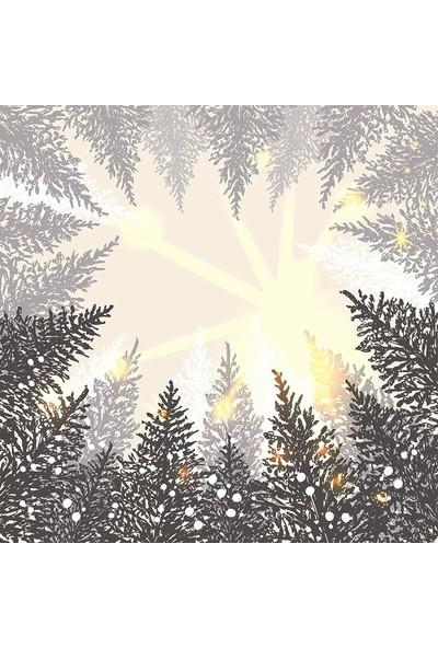 Henge Çam Ağaçları Kar Kış Gökyüzü Manzaralı