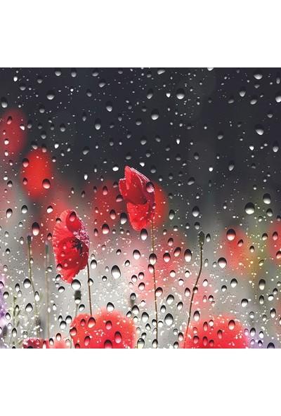 Henge Kırmızı Gelincikler Yağmur Manzaralı Duş Perdesi
