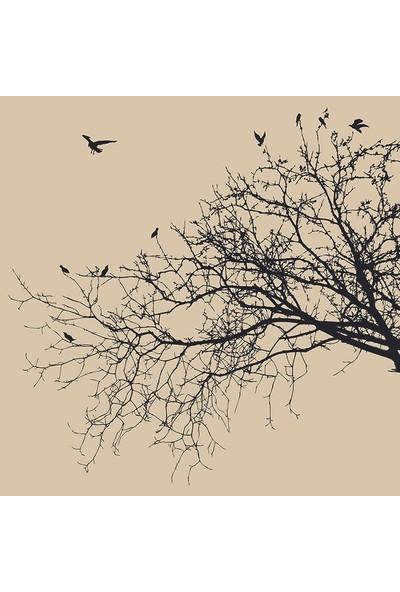 Henge Kuşlu Kavak Ağaç Desenli Siyah Krem Rengi Duş Perdesi