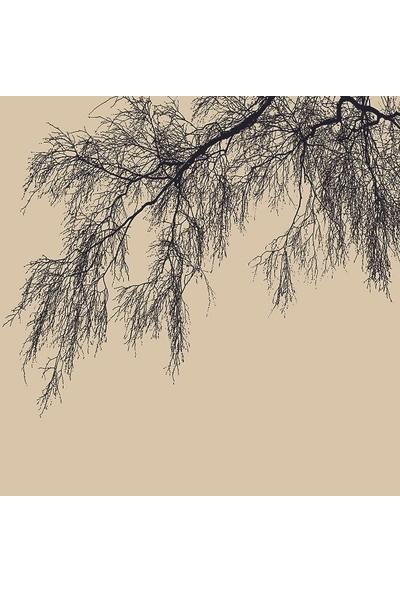 Henge Ağaç Dalı Desenli Siyah Krem Rengi Duş Perdesi