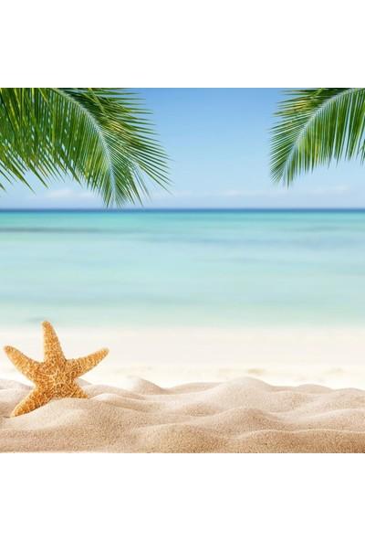 Henge Kumsal Deniz Yıldızı Palmiye Deseni Duşperdesi