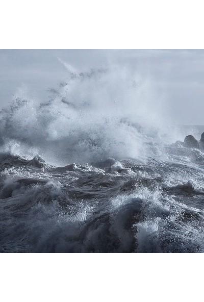 Henge Kayalık Dalga Deniz Desenli Duşperdesi