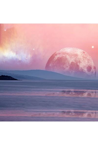Henge Büyük Pembe Ay Okyanus Işıltı Desenli Duşperdesi