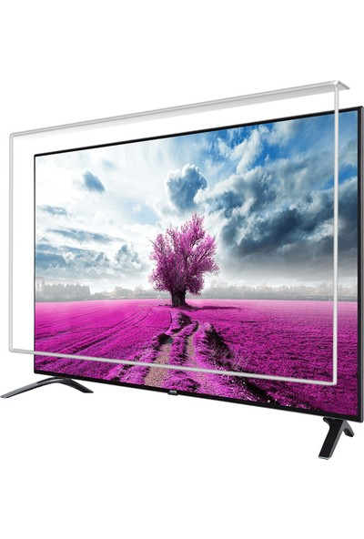Etiasglass VESTEL 55UD9360 Tv Ekran Koruyucu / Ekran Koruma Camı