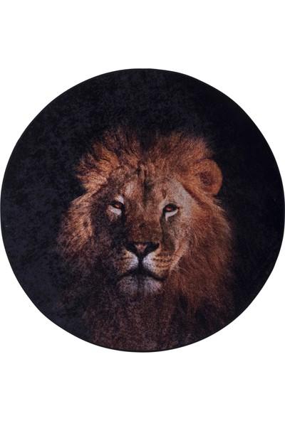 Caricia Home Lion
