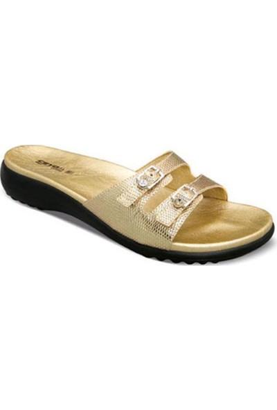 Ayakkabıbu Dore Ceyo 9801-5 Kadın Terlik