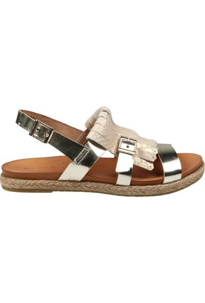 Hammer Jack Vaketa 13-08 Kadın Terlik Sandalet 236 4154-Z