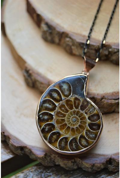 Stoneage Jewellery Amonit Fosili Doğal Taş Bayan Kolye