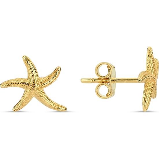 Aypa Mücevher Deniz Yıldızı Altın Küpe