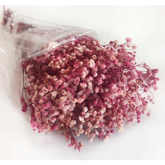 Doğal Cipso Çiçek Pembe ( 18 cm * 40 cm ) ( 1 Demet _ 50 Gram)