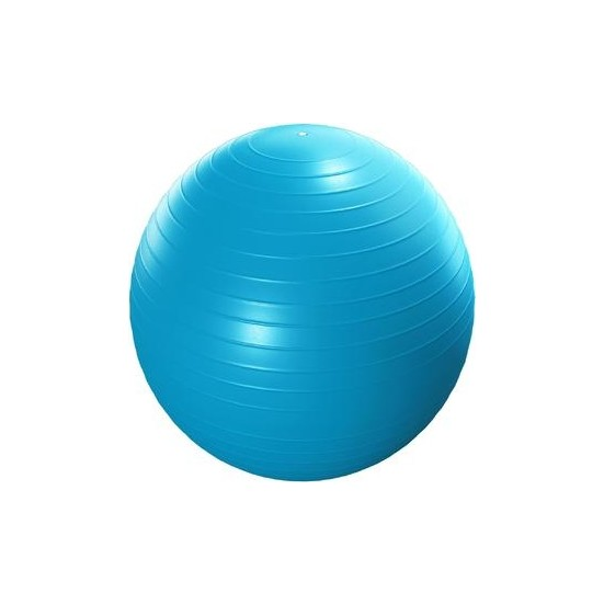Max-Tech Deluxe 65 cm Pilates Topu