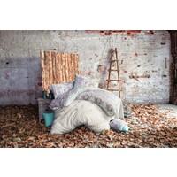 İssimo Home -Ranforce Çift Kişilik Nevresim Takımı Gazelle