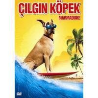 Marmaduke - Çılgın Köpek