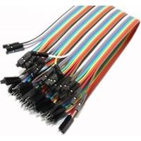 China 40 Pin Ayrılabilen Dişi-Erkek Jumper Kablo-200 Mm