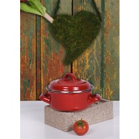 Keramika 2 Parça Mini Emaye Tencere 10 Cm Kırmızı