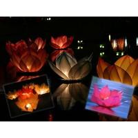 Toptancı Kapında Nilüfer (Çiçek) Su Feneri