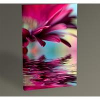 Tablo 360 Pink Daisy Tablo 30 x 20 cm