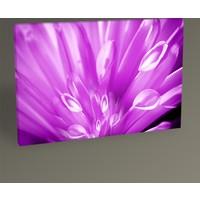 Tablo 360 Purple Flower Tablo 30 x 20 cm