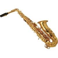 Castle Alto Saxophone 1001