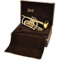 Bach Kornet 184L