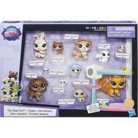 Littlest Pet Shop Miniş Koleksiyoner Seti B6625