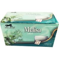 Pars Melisa Çayı