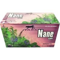 Pars Nane Çayı