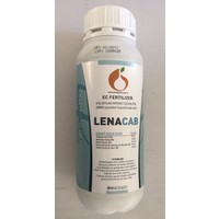 Lena Lenacab 1Lt