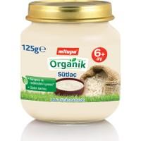 Milupa Organik Sütlaç 125 gr