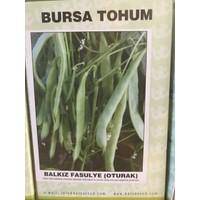 Bursa Tohum Balkız Fasulye / Oturak / 1 Kg