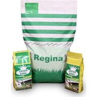Regina 6 M Çim Tohumu 1 Kg