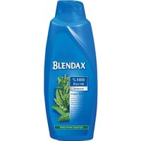 Blendax Isırgan Özlü Şampuan 650 ML