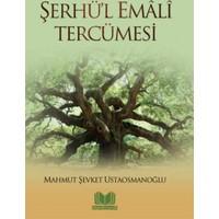 Şerhü'l Emali Tercümesi